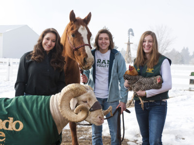 Students pose with Cam the Ram, a horse and chicken