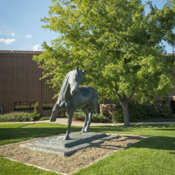 The horse statue out front of the Equine Center