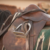 a saddle on a polo horse