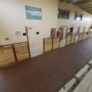 tie rails at the adams-atkinson arena