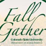 Fall Gather postcard