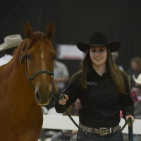 student leads horse through the auction ring