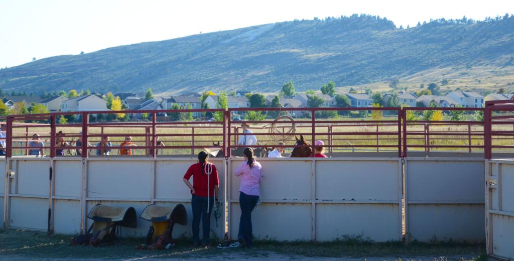 Equine Sciences Colorado State University