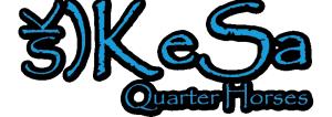 KeSa Quarter Horses logo