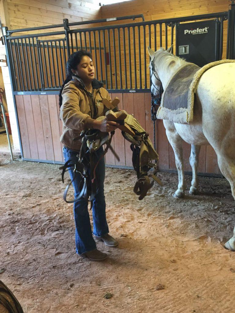 Mountain Riders Horse Club Equine Sciences Colorado