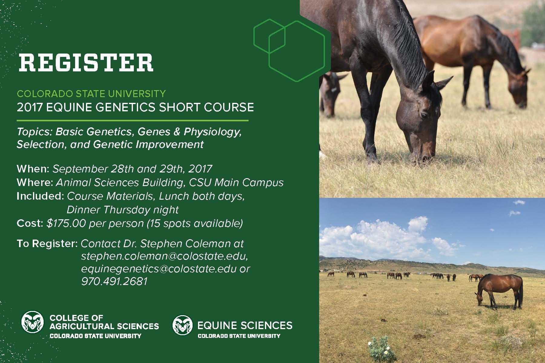 Equine Short Courses   Equine Sciences   Colorado State
