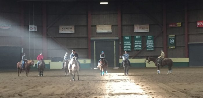 Ranch Horse Team in Arena