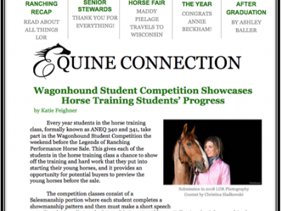 Equine Connections