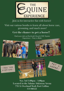 Flyer for the Equine Experience