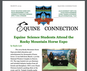 Equine Connections Cover